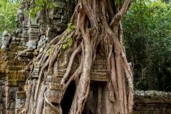 Kambodscha-24